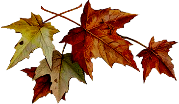 autunno png
